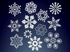 FreeVector-Floral-Snow-Flakes.jpg